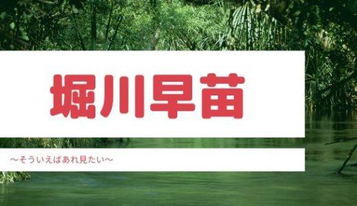 堀川早苗の現在を調査!結婚した夫や子供についても!
