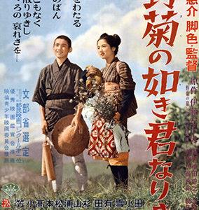 映画「野菊の墓」の歴代キャストを調べてみた!