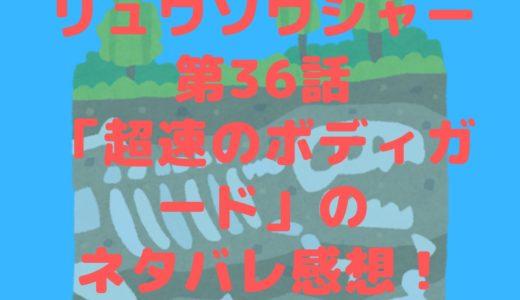 騎士竜戦隊リュウソウジャー第36話「超速のボディガード」のネタバレ感想!