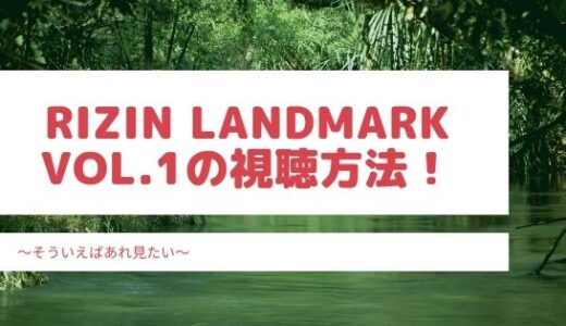 RIZIN LANDMARK vol.1の視聴方法の紹介!お得な料金でみられるのはどこ?